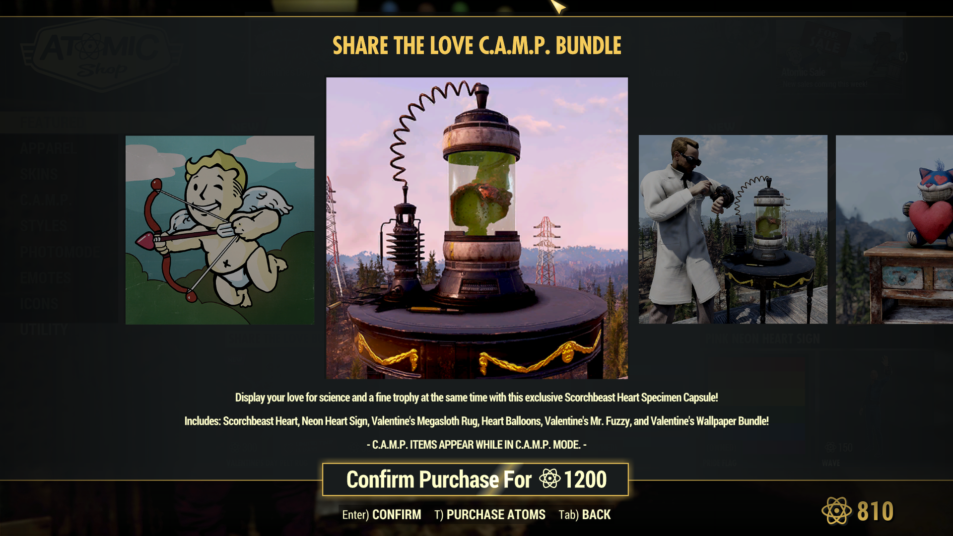 Share the Love CAMP Bundle